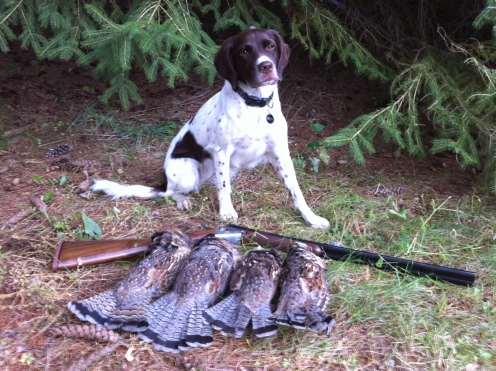 Litha with several grouse
